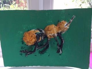 Finn created some insect artwork