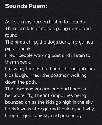 Izzy's poem!