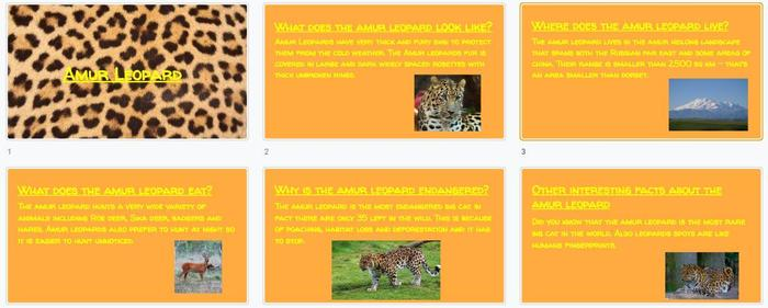 Jack R created a slideshow about the Amur leopard