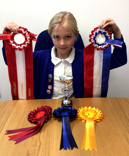 Horse Show awards! 1st,2nd,3rd,Championship and 2nd in Supreme Championships