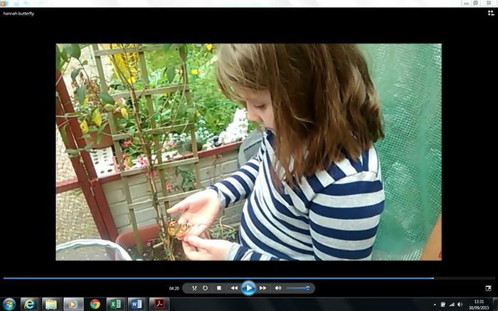 Hannah 4LG: An amazing Caterpiller/ Butterfly film