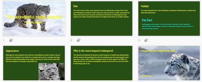 Ollie K's research on the snow leopard