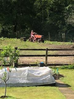Evie mowing!