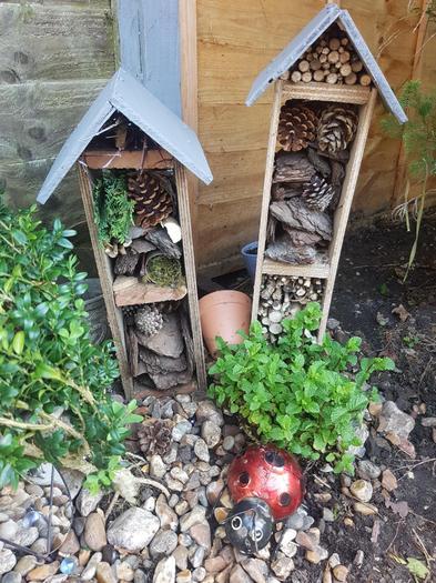Devon's bug houses he has built