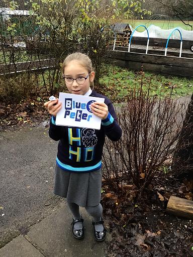 Blue Peter Badge: NHS Raindow picture
