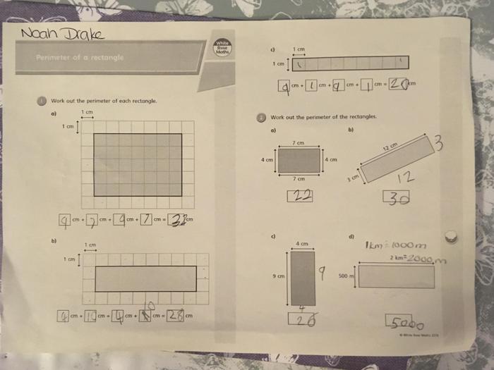 Noah's maths!