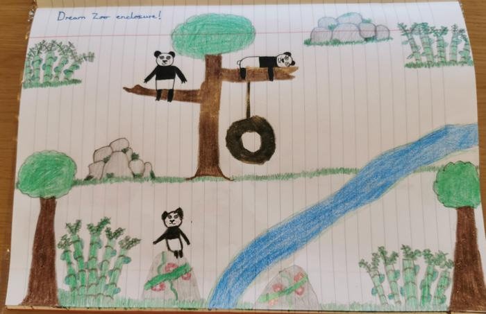 Oliwia designed her dream panda enclosure