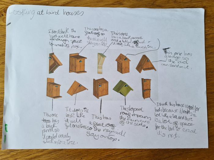 Elliot's bird box research