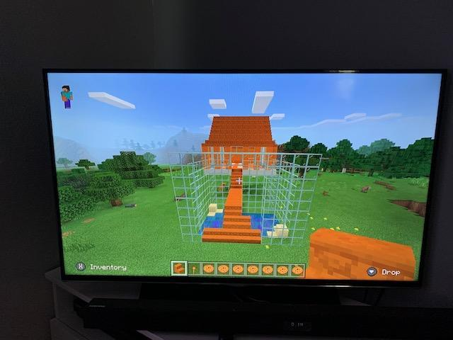 Sophie S made a Maya temple in Minecraft