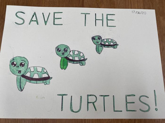 Jemma made a 'save the turtles' poster