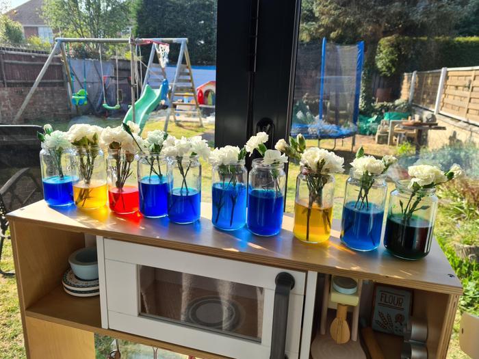 Elliot's science experiment!
