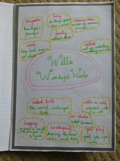 Will's Wonderful Words by Rafferty