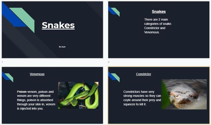 Zack made some slides about snakes