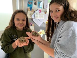 Abi and her sister with their new pet tortoises!