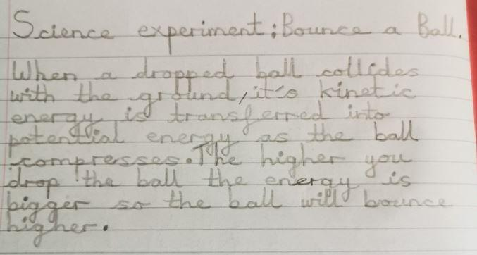 Oliwia's conclusion of her science experiment