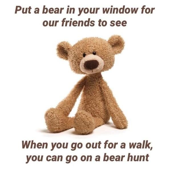 Put a bear in your window for passers by to see!