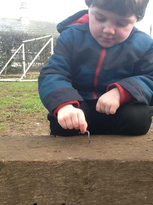 finding wriggly worms