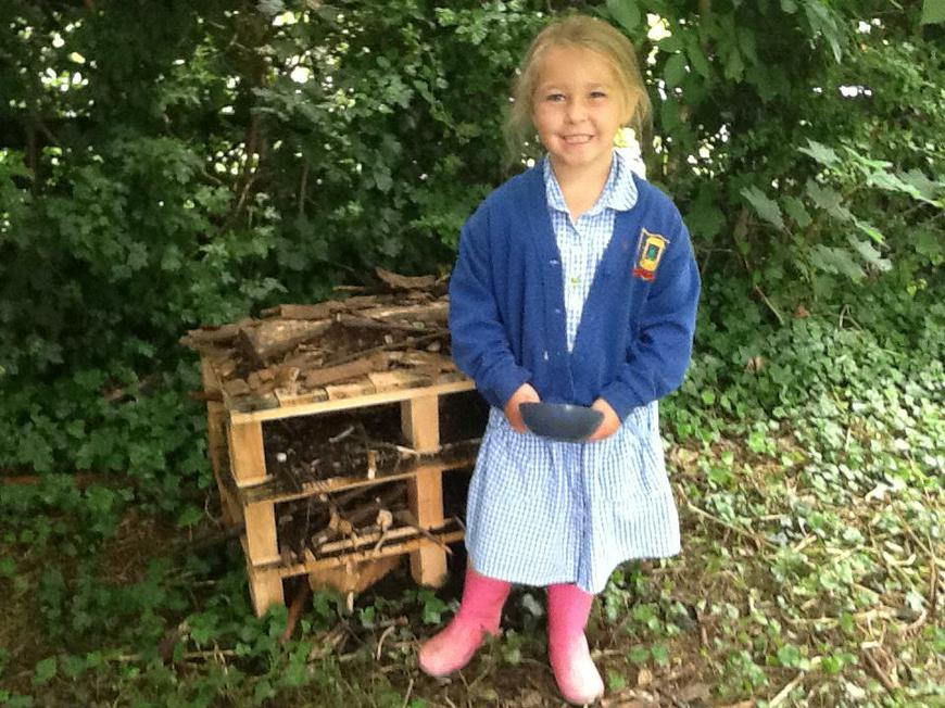 We have some bugs staying in the Bug Hotel
