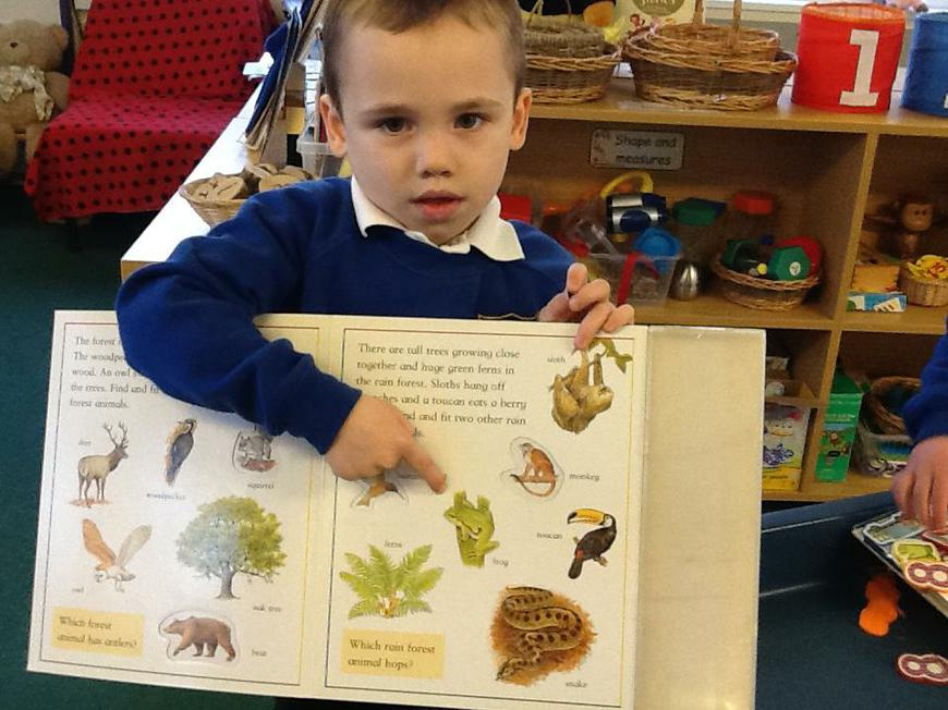 finding out information in non-fiction books
