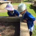 Looking for minibeasts in the park.