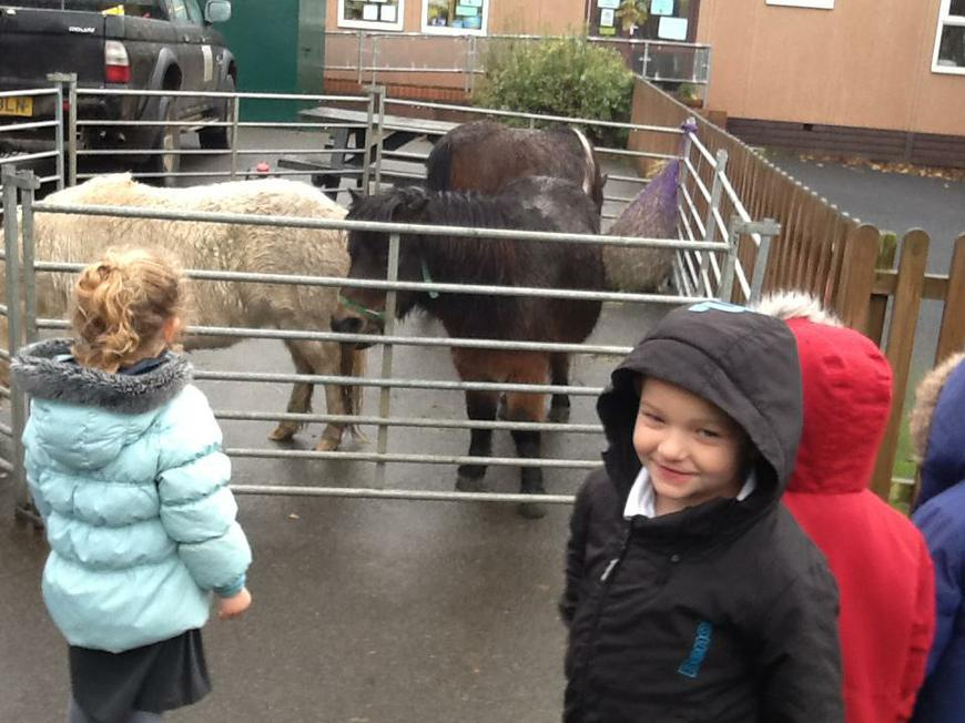 Dave's animals came to see us!