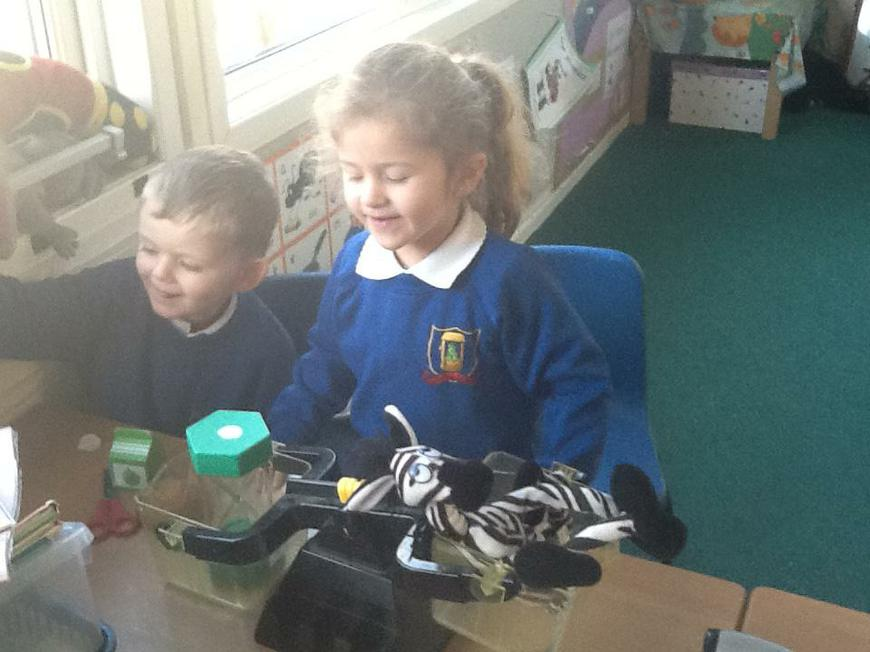 weighing objects - heavier or lighter than teddy?