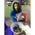 We love to make new recipes in the mud kitchen.