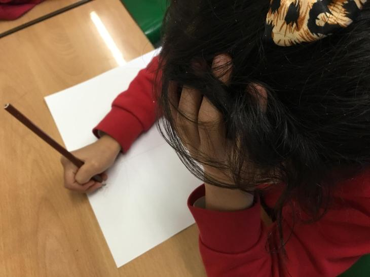 Drawing our observations