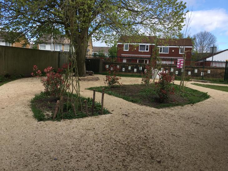 Shrubs planted in KS1 playground.