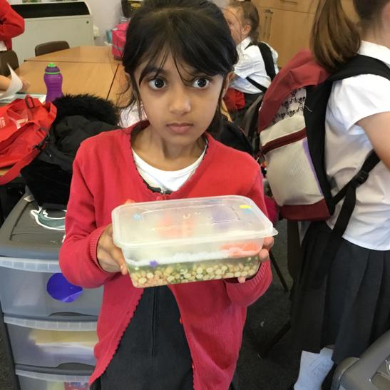 Emaan used food to create an under water scene