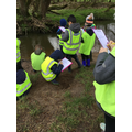 We drew and labelled the river bank.