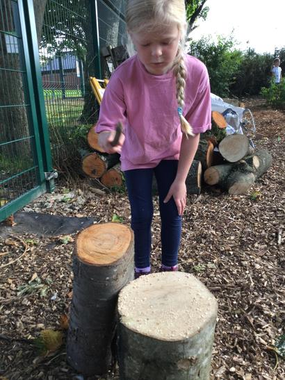 We found out that different sized logs made different sounds.