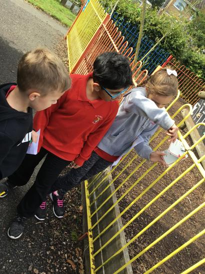 We found clues on the fences...
