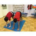 Symmetrical balances in gymnastics