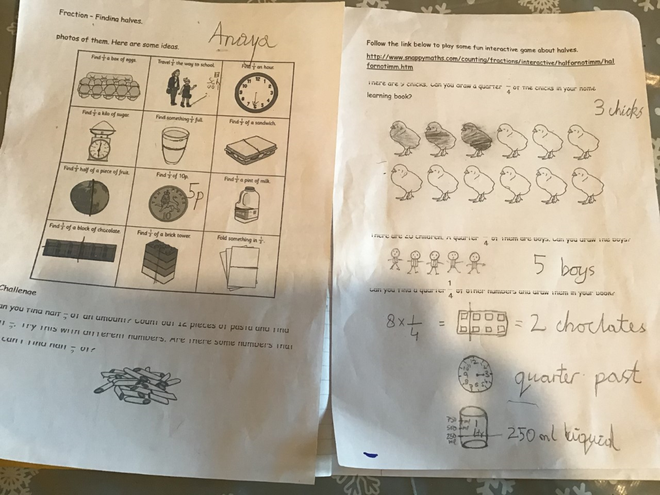Maths-making halves and quarters by Anaya, Blue