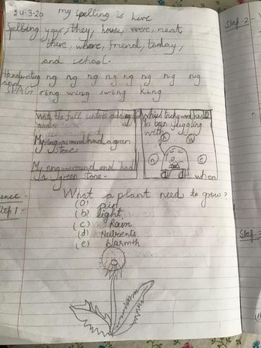 Science,handwriting, spelling by Anaya,Blue class