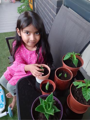Science- Growing plants by Nusaibah, Bulu