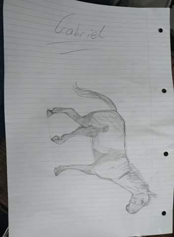 Gabriel (Orange) has drawn Joey from War Horse