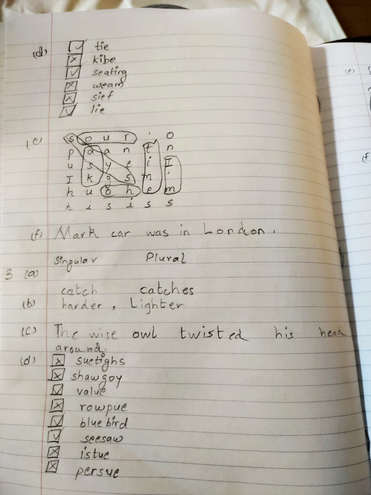 SPaG learning by Aditya, Blue class
