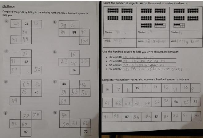 Maths - Counting by Rayan, Bulu