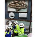 Natural History Museum trip!