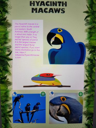 Dipthi- Green Class- Science- Endangered Animals