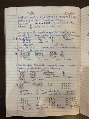 Maths-making arrays by Logan, Buluug