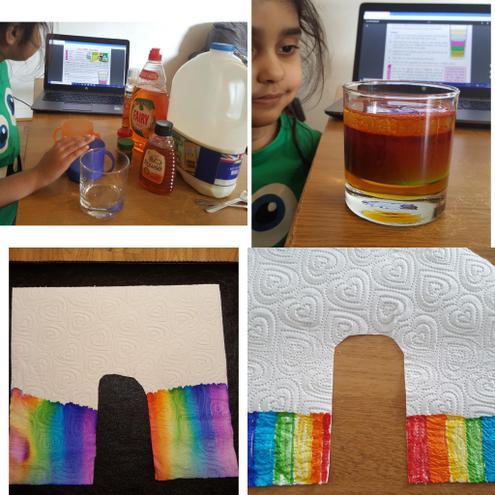 Science- Investigations by Fatima, Bulu