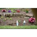 Checking out Finlay's garden