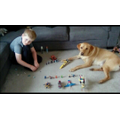 Lego with Finlay