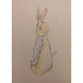 Hamza's Peter Rabbit illustration
