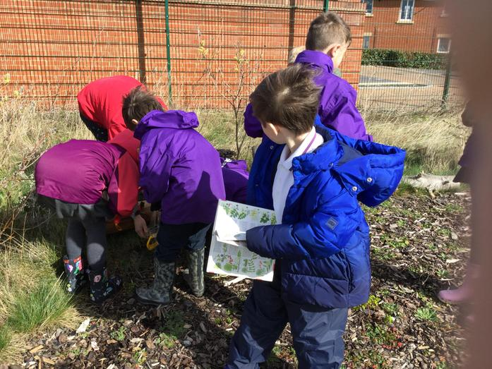 identifying what we have found.