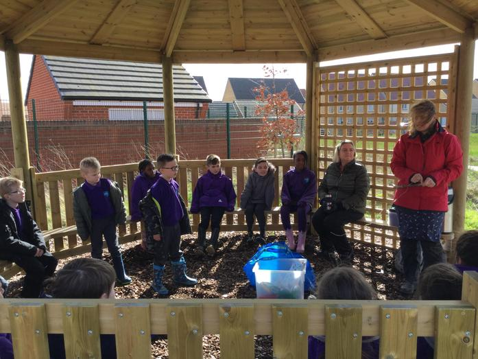 Using the outdoor classroom.