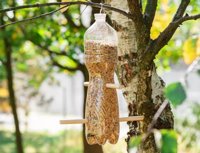 Bird seed dispenser made with a plastic bottle and recycled wooden spoons